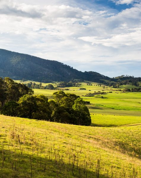 View of Little Dromedary and surrounding fields near Tilba, New South Wales, Australia